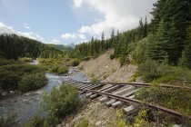 Old Railway Tracks — Stock Photo