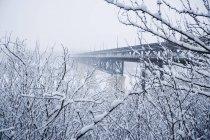 Vista del puente en invierno - foto de stock