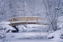 Small wooden Bridge — Stock Photo