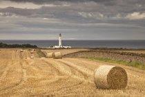 Barns Ness Lighthouse Along The Coast — Stock Photo