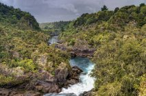 Вайкато річка, що протікає через краєвид — стокове фото