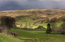 Nubi di tempesta sopra dolci colline — Foto stock