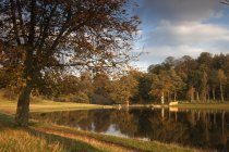 Autumn Trees Reflected — Stock Photo