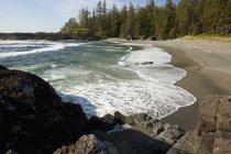 South Beach в Тихоокеанського обода Національний парк — стокове фото