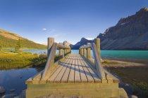 Pont en bois pieds — Photo de stock