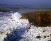 Ondas na costa — Fotografia de Stock