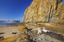 Low Tide At Seal Rock State Recreation Site — Stock Photo