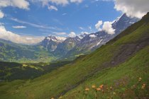 Вид на пагорби і гори — стокове фото
