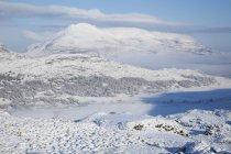 Schneelandschaft im Killarney Nationalpark — Stockfoto