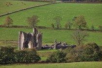 Старый разрушенный замок — стоковое фото