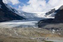 Plein air Glacier Athabasca — Photo de stock