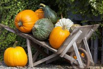 Gourds And Pumpkins In Wheelbarrow — Stock Photo