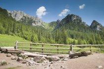 Вид на горы Татры — стоковое фото