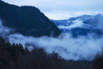 Мальовничий вид на туман — стокове фото