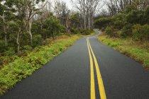 Mauna Loa Road — Photo de stock