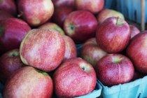 Manzanas frescas en el stand de la granja - foto de stock