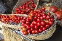 Brillanti rossi pomodori maturi in cesti; Ischia, Campania, Italia — Foto stock