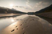 Empreintes dans le sable humide — Photo de stock