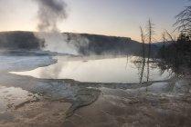 Dampf steigt im Morgengrauen am Mammoth Hot Spring — Stockfoto