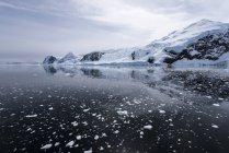 Hielo de temerario y reflexiones; Antártida - foto de stock