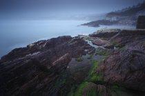 Costa brumosa alrededor de Roches Point - foto de stock