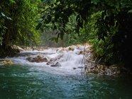Водоспад і деревами поблизу місті Kimbe — стокове фото