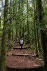 Joven mujer trekking - foto de stock