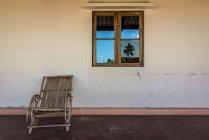 Palmeira, reflectida na janela — Fotografia de Stock