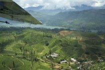 Colline, piantagioni di tè e lago — Foto stock