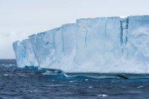 Iceberg tabular na água — Fotografia de Stock