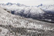 Vista aérea de montañas - foto de stock