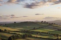 Сільська місцевість поблизу Loughcrew — стокове фото