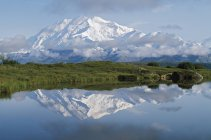 Гора Мак-Кинли, Национальный Парк Денали — стоковое фото