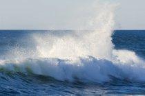 Fracas des vagues, Cape Kiwanda — Photo de stock
