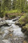 Течет река в горах — стоковое фото