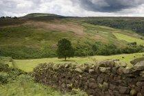 Hang, North Yorkshire, England — Stockfoto