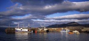 Barche da pesca nel porto di Carradale — Foto stock