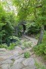 Путь к пролетной арке — стоковое фото