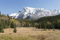 Mount Inglismaldie, Banff Park — Stock Photo