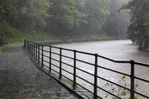 Path Around River Wansbeck, Morpeth — Stock Photo