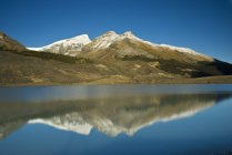 Sunwapta Lake, Jasper National Park — Stock Photo