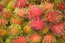 Rambutan cru fresco — Fotografia de Stock
