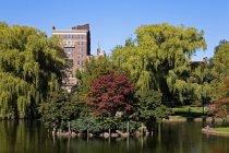 Öffentlicher Garten in Boston — Stockfoto