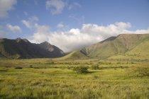 Hawaiian paysage avec des collines — Photo de stock