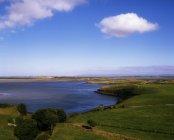 Vista de la costa con hierba verde - foto de stock