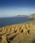 Slea Head; Co Kerry, Ireland — Stock Photo