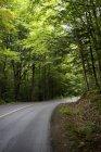 Strada in Muskoka, Ontario, Canada — Foto stock