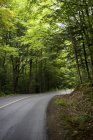 Road in Muskoka, Ontario, Canada — Stock Photo