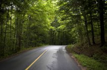 Strada in Muskoka, Ontario — Foto stock