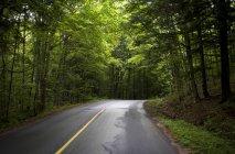 Straße in Muskoka, Ontario — Stockfoto
